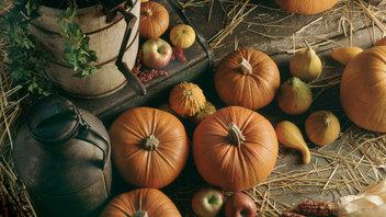 Recetas para la temporada de otoño